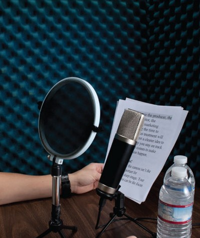 5 Script Tips For Voice Seekers