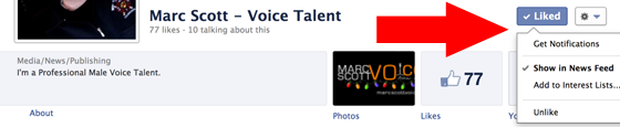 Get Your Facebook Page For Your Voice Over Business Seen